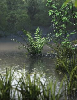 Fern Lake Bundle