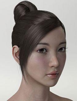 HY Updo Hair for Genesis 3 Female(s)