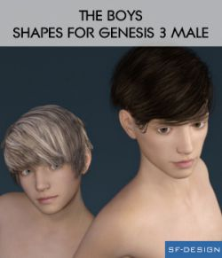 The Boys- Shapes for Genesis 3 Male