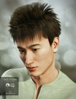 Tatsuo Hair for Genesis 3 Male(s)