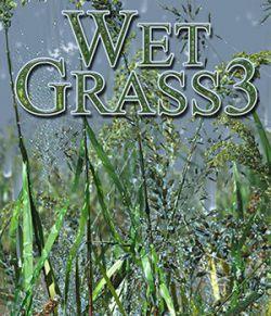 Flinks Wet Grass 3