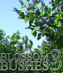 Flinks Blossom Bushes 3