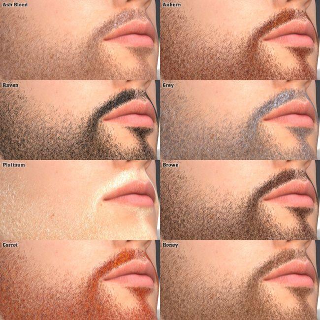 Genesis 3 - Master Beard Resource