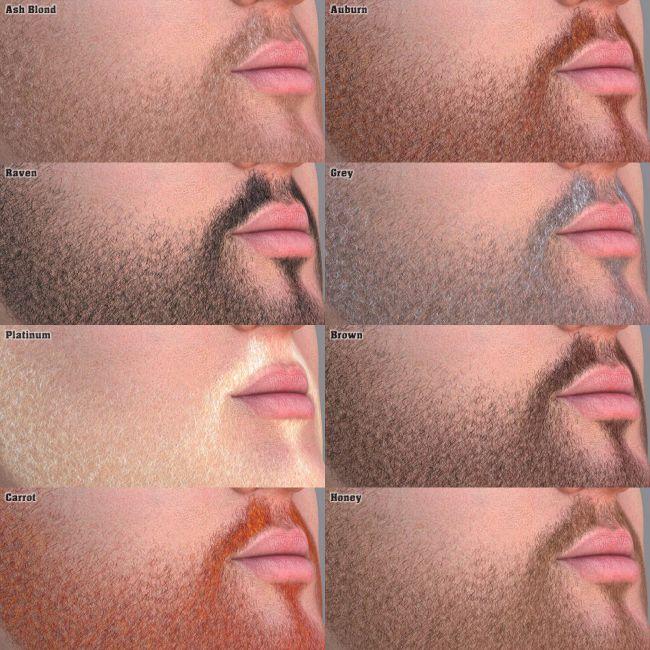 EVO face - Master Beard Resource