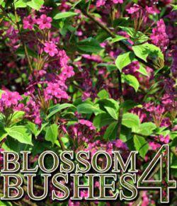Flinks Blossom Bushes 4