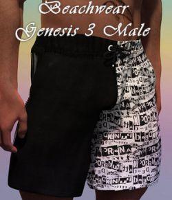 Beachwear for Genesis 3 Males