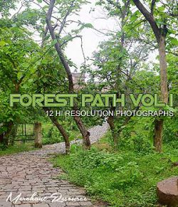 FOREST PATH VOL I
