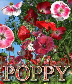 Flinks Flowers - Flower 4 - Poppy