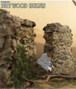 3D Scenery: Drywood Ruins