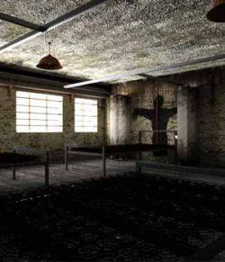 The Asylum Wing