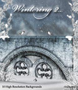 Wintering2...