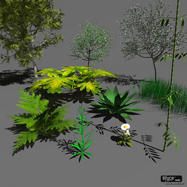 Plants Object format