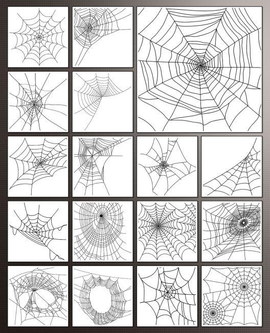 PB - Cobweb