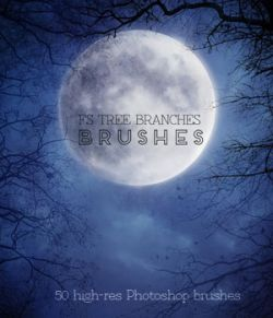 FS Tree Branches Brushes