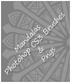 24 Mandala Brushes and PNGs