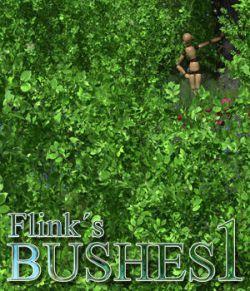 Flinks Bushes 1
