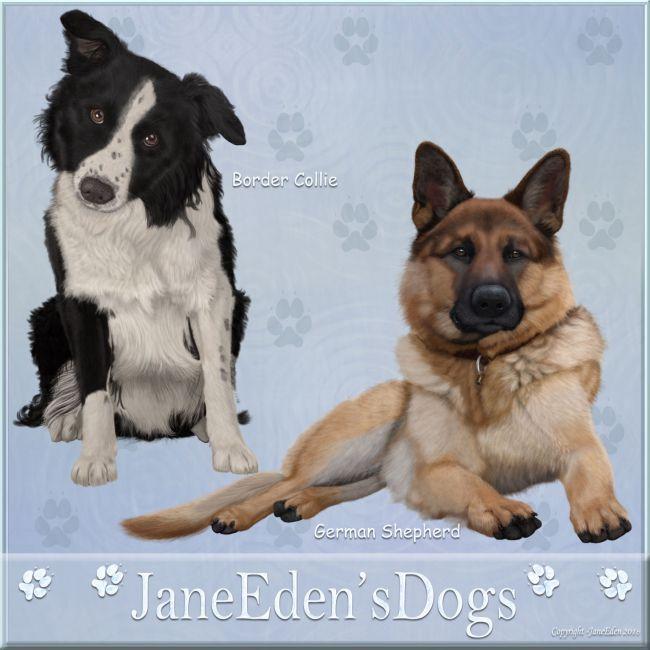 JaneEden'sDogs