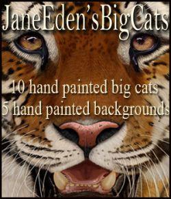 JaneEden'sBigCats