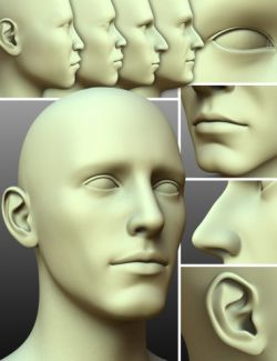 200 Plus- Head & Face Morphs for Genesis 3 Male(s)