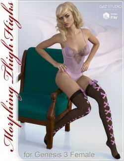 Thigh Highs Stockings & Socks for Genesis 3 and 8 Female(s)