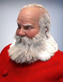 Santa Claus Hair