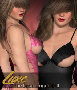 Luxe for Lace Lingerie III