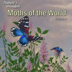 Nature's Wonders Moths of the World Vol. 3