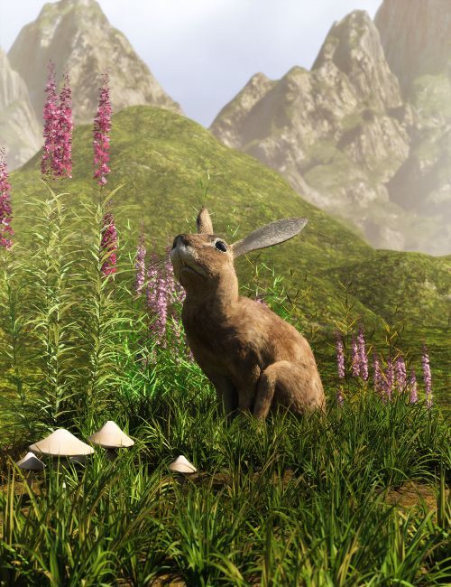 Little Patch Of Grass for Daz Studio and Iray