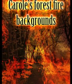 Carole's forest fire backgrounds