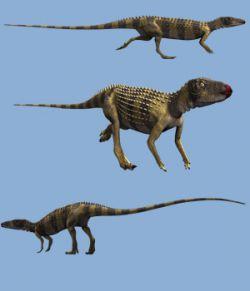 ScutellosaurusDR
