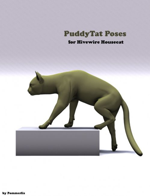 PuddyTat Poses for the HW House Cat