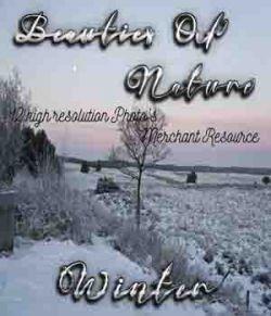 Beauties Of Nature- Winter