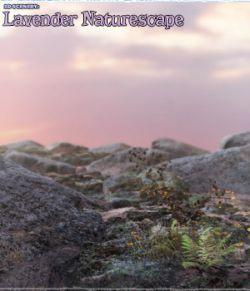 3D Scenery: Lavender Naturescape