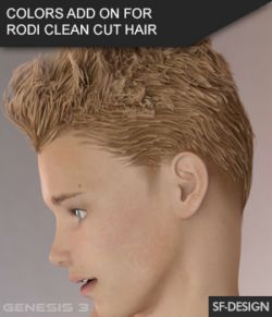 Colors Add On for Rodi Clean Cut Hair for Genesis 3 Male(s)