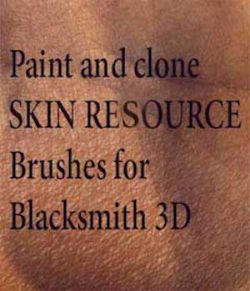 Blacksmith3D Skin resource brushes