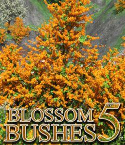 Flinks Blossom Bushes 5