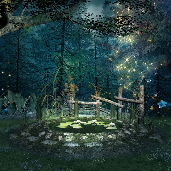 Enchanted Forest Backgrounds 3d Models For Poser And Daz