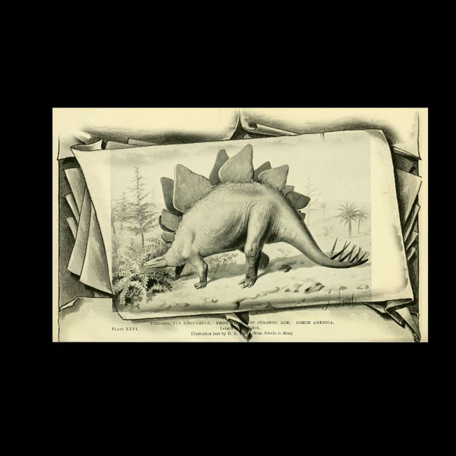 Old Book Sketched Frames PS Brushes