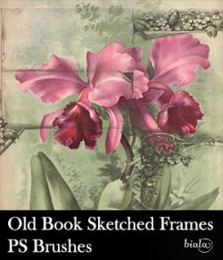 Old Book Sketched Frames PS Brushes