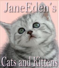 JaneEden's Cats and Kittens