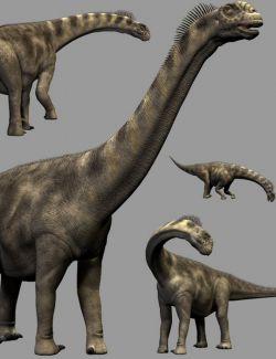 CamarasaurusDR