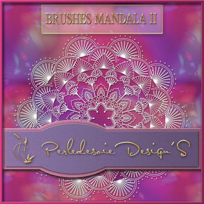 Brushes Mandala 2