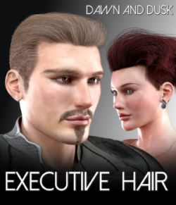 Executive Hair for Dawn and Dusk
