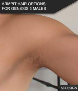 Armpit Hair Options for Genesis 3 Male Based Characters and MR