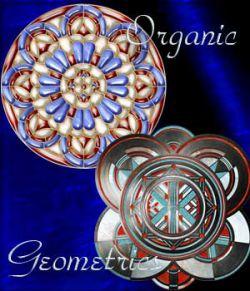Harvest Moons Organic Geometrics