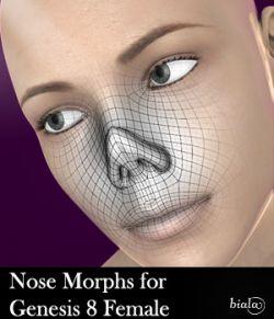 Nose Morphs for Genesis 8 Female