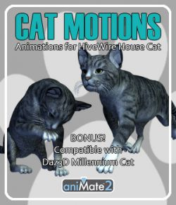 Cat Motions