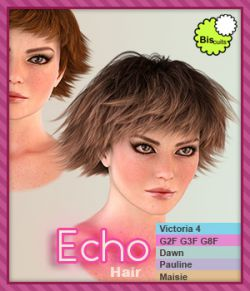 Biscuits Echo Hair