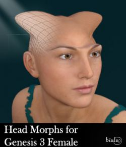 Head Morphs For Genesis 3 Female