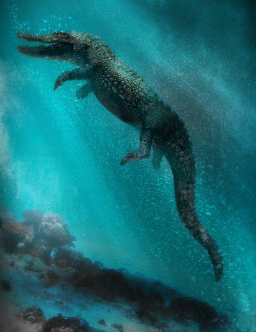 Iray Alligator by AM